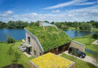 habitat house smaller.jpg