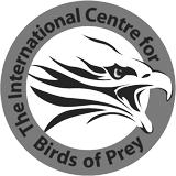 ICBP-logo.png