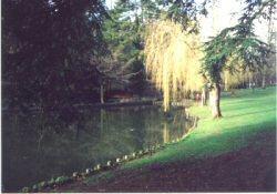 stratordpark2
